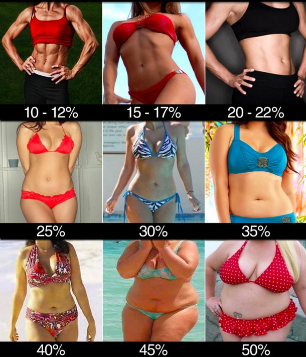 V Line Hannah Miller Fitness Blog